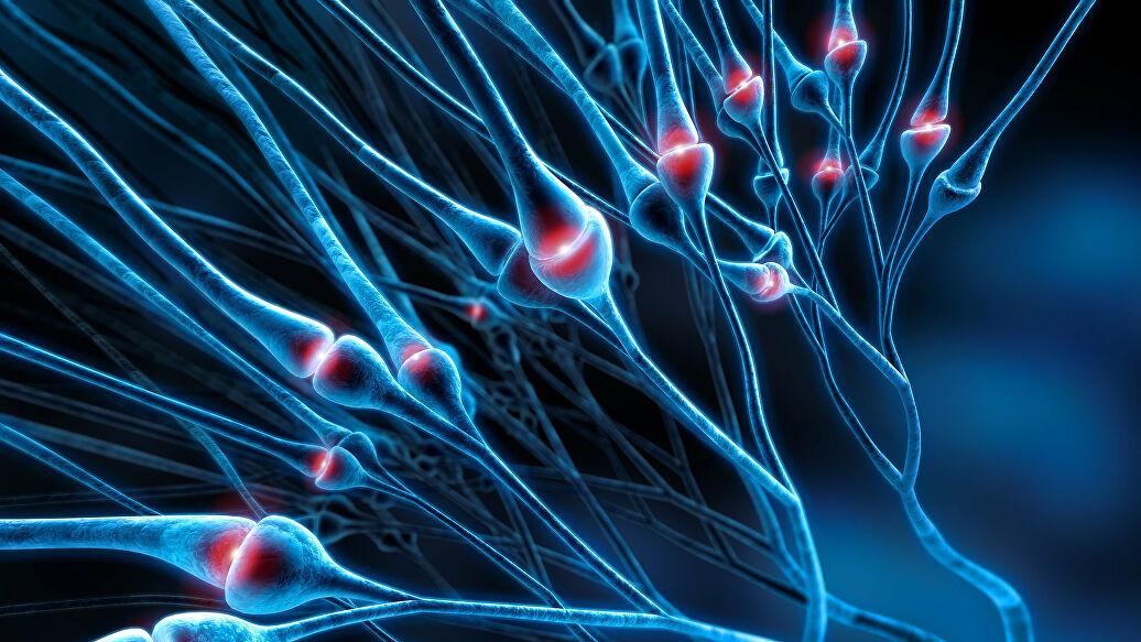 Прионы: смертоносные молекулы-зомби