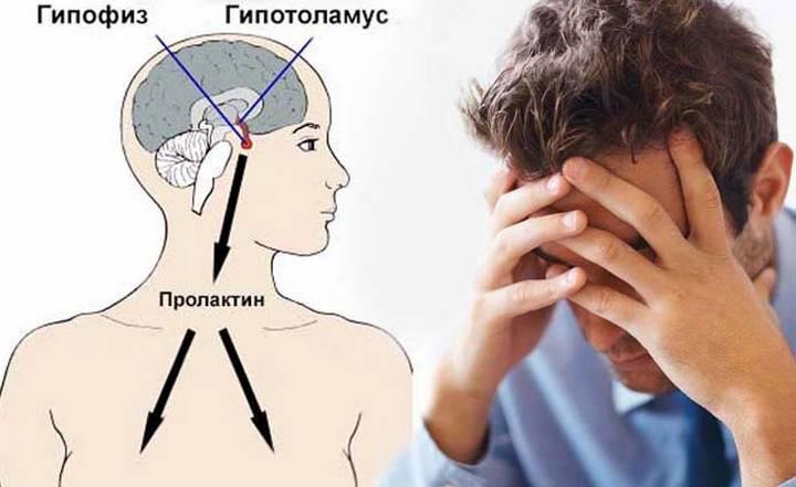 Лактогенный гормон