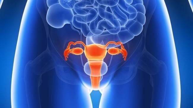 Депантол - инструкция по применению, аналоги, отзывы и формы выпуска свечи вагинальные, крем или мазь препарата для лечения эрозии шейки матки, вагинита и трещин сосков у взрослых, детей и при беременности