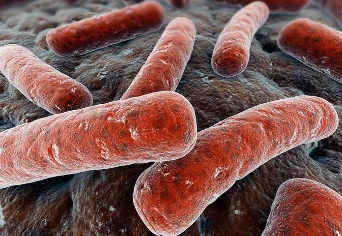 Туберкулёз почек: причины, симптомы и лечение. методы диагностики