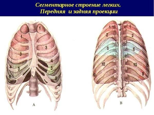Признаки воспаления легких у взрослого без температуры: возможно ли это?