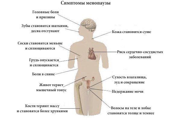 Климакс и климактерический синдром: что происходит в организме женщины? предвестники, приливы, симптомы и проявления, диагностика климакса (менопаузы). заболевания, связанные с климаксом (миома матки, гиперплазия эндометрия и другие)