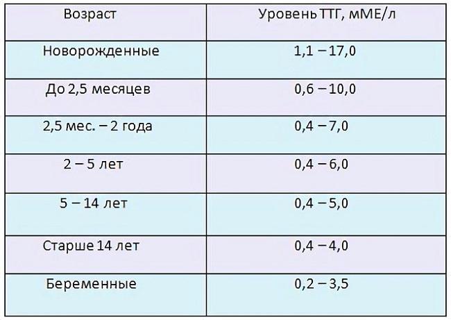 Ттг у женщин – таблица норм для разных возрастов. что делать, если ттг повышен?