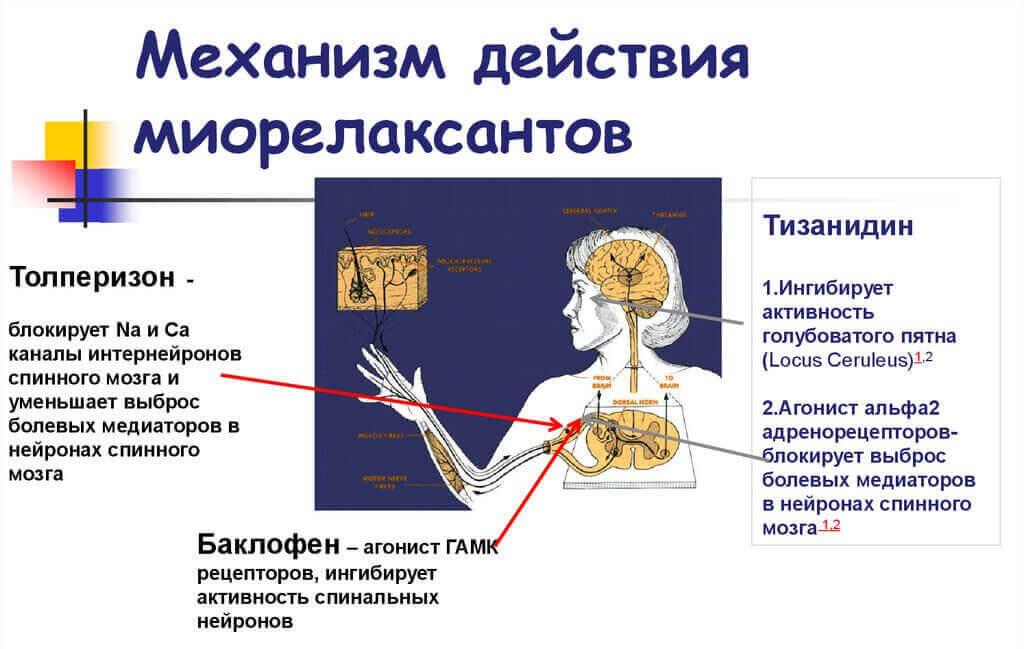 Наркоз при кесаревом сечении - какой наркоз лучше при кесаревом сечении - стр. 1 - запись пользователя ольга (id827876) в сообществе рассказы о родах в категории москва (юзао) - babyblog.ru