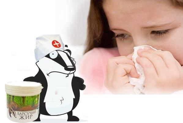 Барсучий жир от кашля: как принимать взрослым и детям