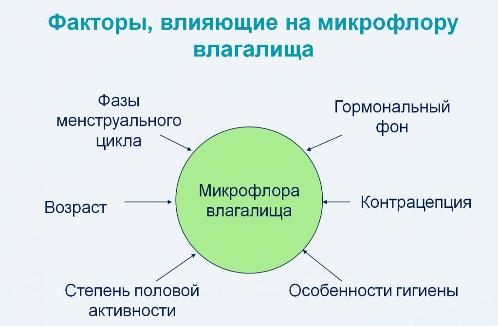 Дисбактериоз в гинекологии: симптомы
