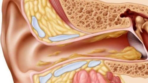 Эффективна ли борная кислота при боли в ушах? инструкция по применению при лечении отита