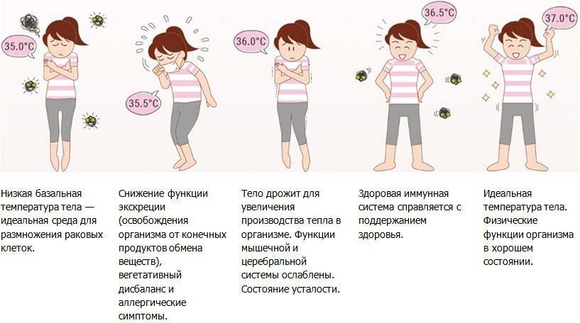 Пониженная температура тела: причины и устранение
