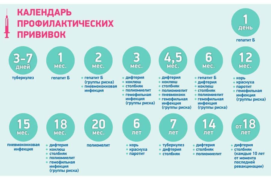 Прививки до года: график вакцинации / mama66.ru