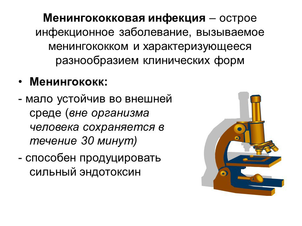 Менингококковая инфекция - симптомы болезни, профилактика и лечение менингококковой инфекции, причины заболевания и его диагностика на eurolab
