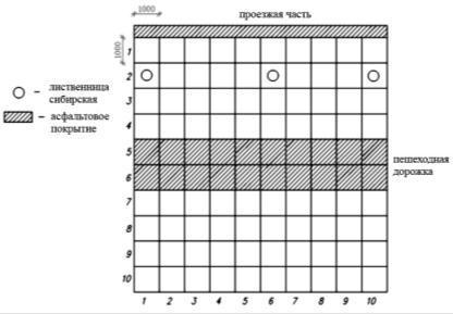 Уколы цефотаксим: инструкция, цена и отзывы