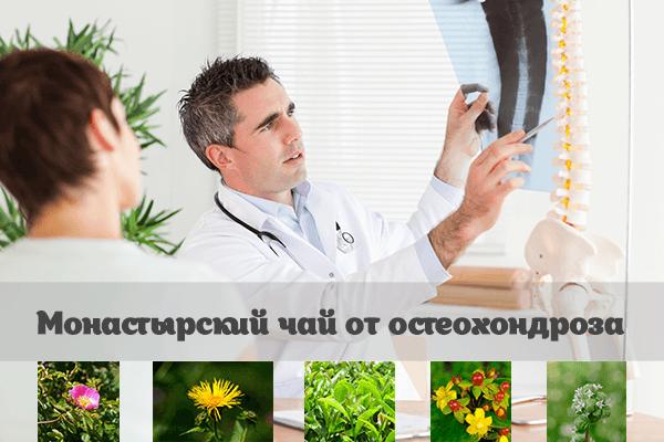 Какие травы пить в первую очередь при лечении остеохондроза? 3 самые популярные рецепты