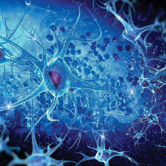 Прионы — белки с эффектом царя мидаса