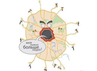Мышечная система — sportwiki энциклопедия