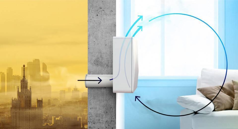 Очиститель воздуха для астматиков и аллергиков: принципы выбора