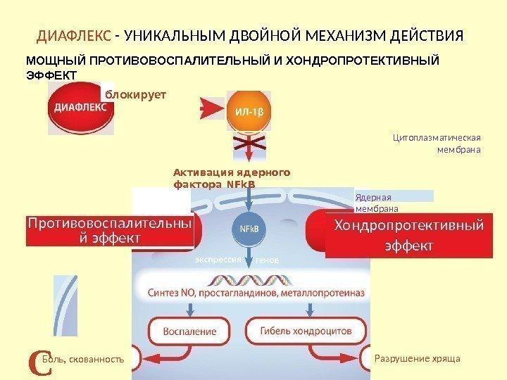Сиднофарм: таблетки 2 мг