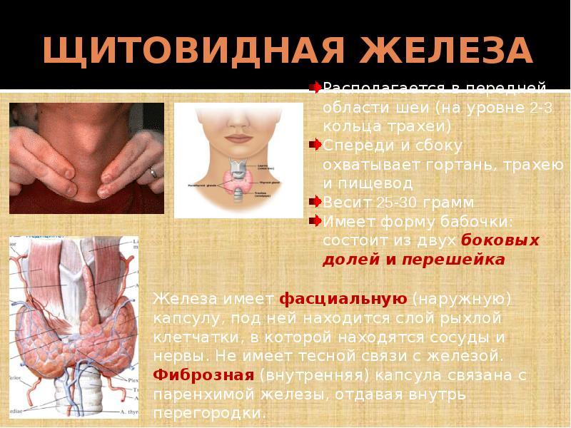 Лечение гиперплазии щитовидной железы 1, 2, 3 степени, признаки заболевания