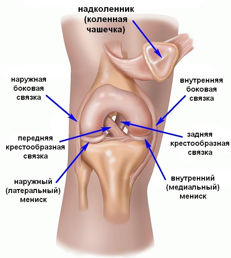 Разрыв мениска коленного сустава: причины травмы, симптомы, диагностика и методы лечения