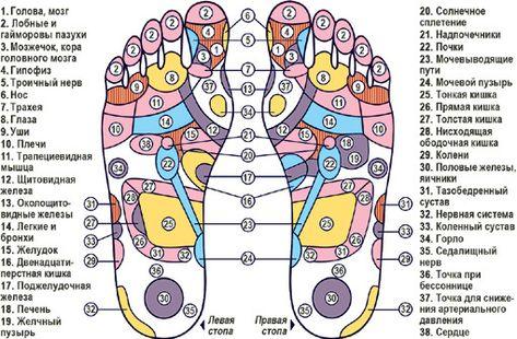 Массаж стопы ног — польза и вред | польза и вред