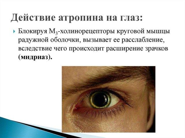 Инструкция и показания к применению препарата «атропин»