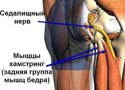 Туберкулезный спондилит (болезнь потта): диагностика, симптоматика и лечение