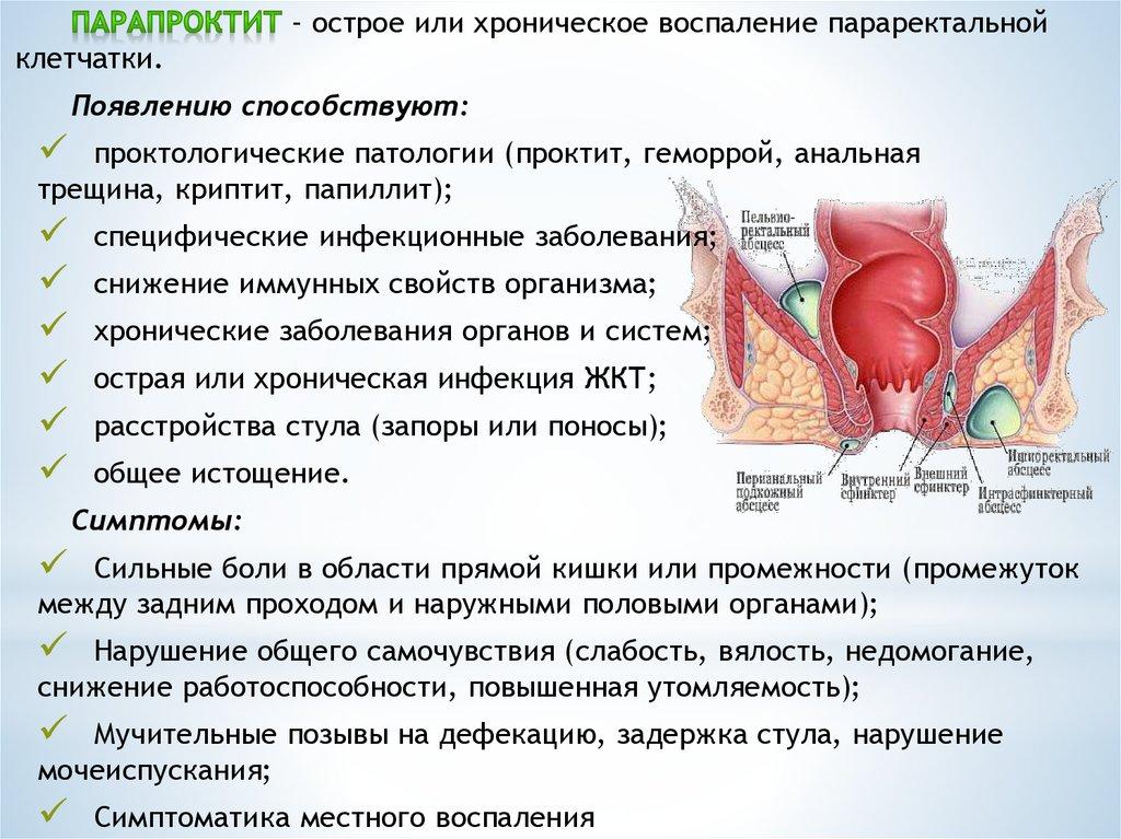 Диета при проктите: особенности питания и примерное меню для пациентов с воспалением прямой кишки