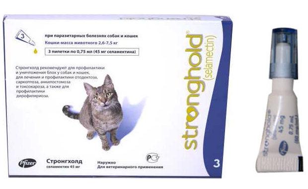 Стронгхолд для кошек – назначение, инструкция, отзывы