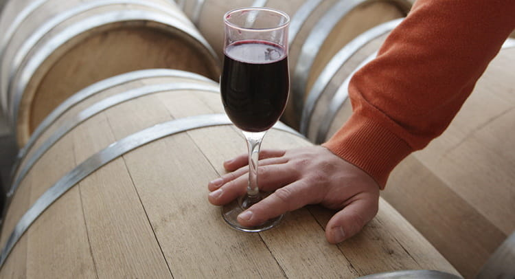 Красное вино: польза и вред для женщин и мужчин