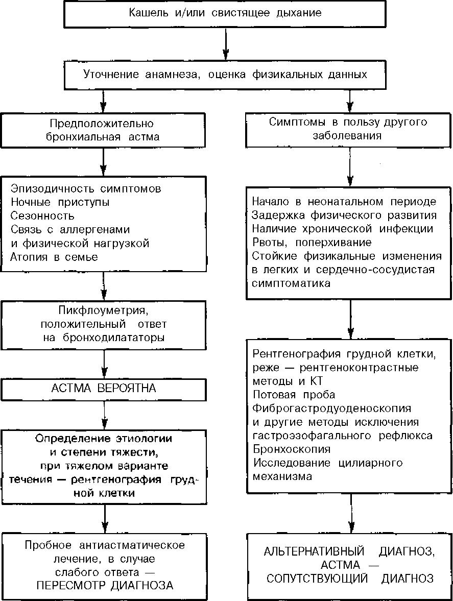 Польза пикфлоуметрии для самоконтроля при бронхиальной астме