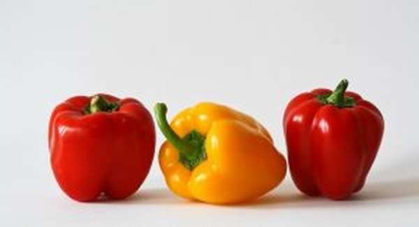 Образ жизни и диета при тромбозе и тромбофлебите как ускорить выздоровление и сделать его вкусным
