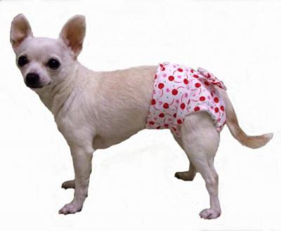 """""""пропалин"""" для собак: аналог, инструкция по применению, состав и отзывы"""