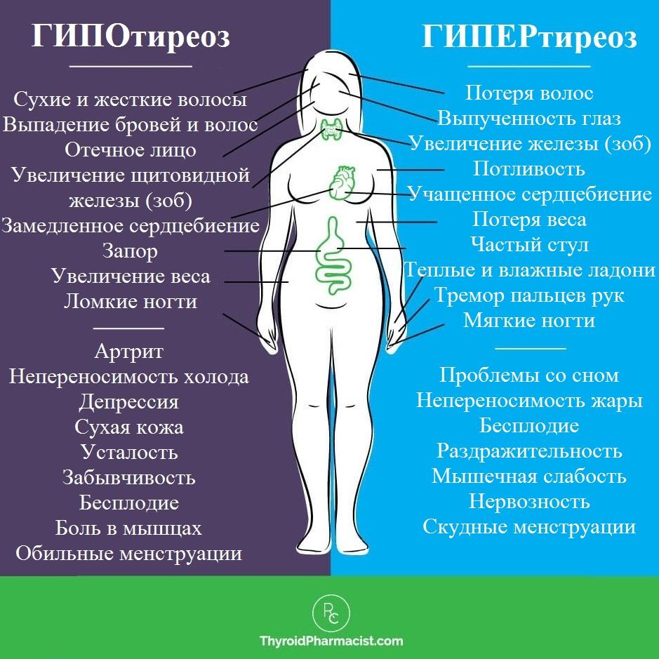 Гипотиреоз лечение эндонорм