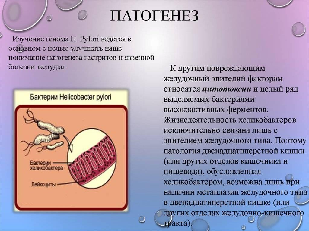 Простатит хеликобактер мед при лечении простатита