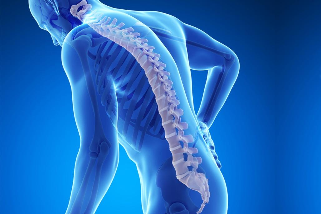 Спондилит позвоночника: симптомы, виды, диагностика и лечение