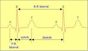 Гипертрофия левого желудочка - признаки на экг. лечение гипертрофии миокарда левого желудочка сердца
