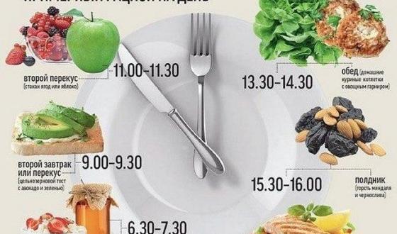 Высокобелковая белковая диета для похудения с примером мен на день