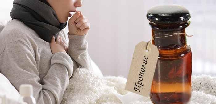 Как принимать прополис при простуде и орви