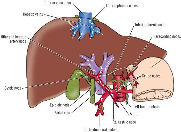 Все нюансы беременности при бронхиальной астме