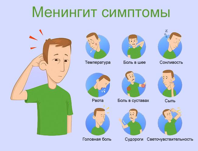 Менингококковая инфекция, менингококк: возбудитель и патогенность, симптомы и лечение
