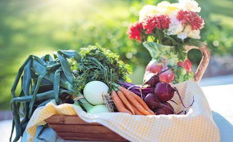 Французская диета для похудения: меню, отзывы и результаты - минус 10 кг легко