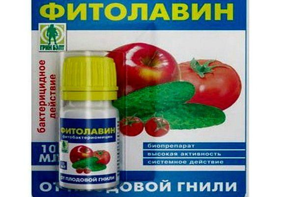 Фитолавин: действие, когда применять, правила использования в огороде и саду