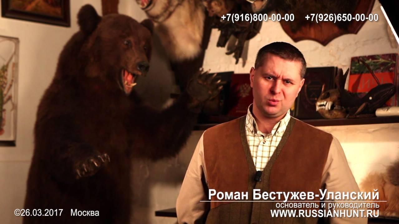 Как правильно лечиться медвежьим жиром от кашля