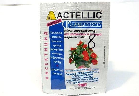 Битоксибациллин: инструкция по применению
