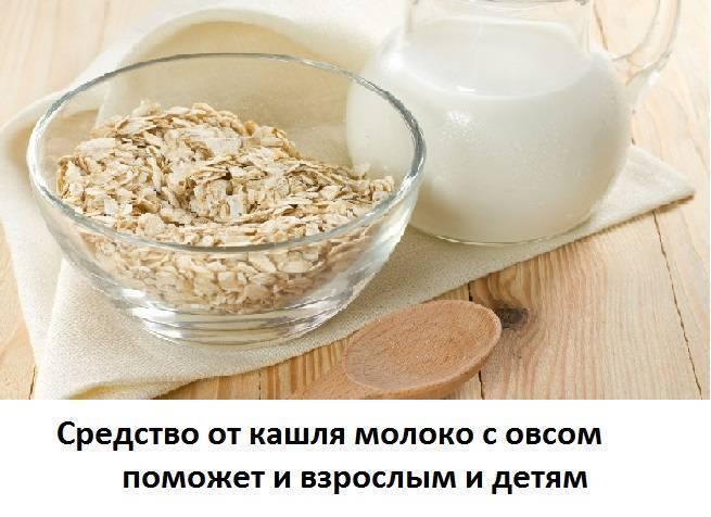 Отвар овса на молоке лечебные свойства и противопоказания