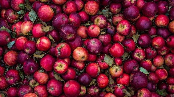 Сокрушающий эффект яблочной диеты