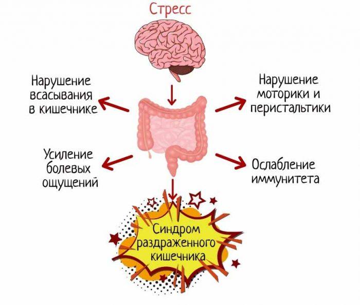 Синдром раздраженного кишечника (срк). причины, симптомы и методы лечения