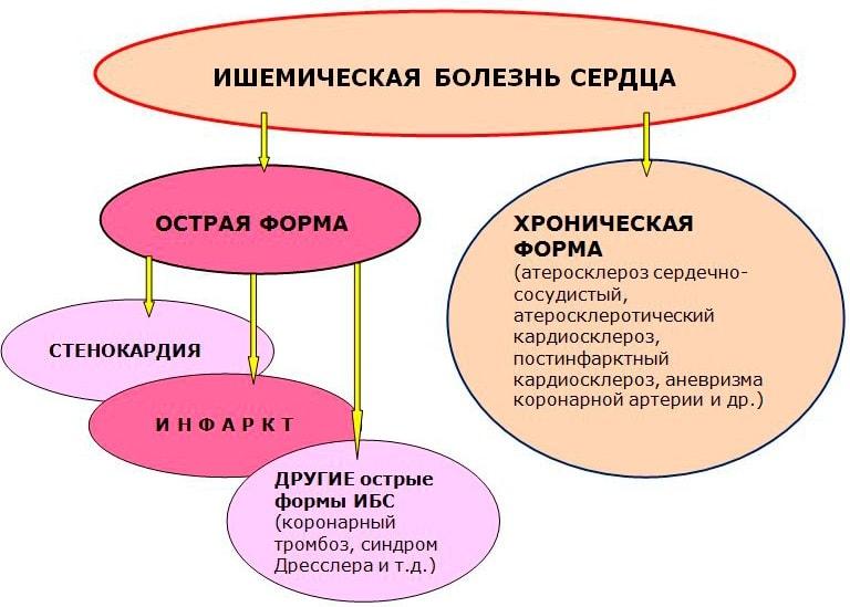 Инструкция по применению тримекора, показания к назначению, противопоказания, аналоги