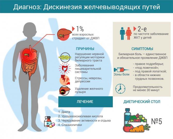 Дискинезия желчевыводящих путей (джвп): причины, симптомы, диагностика и лечение