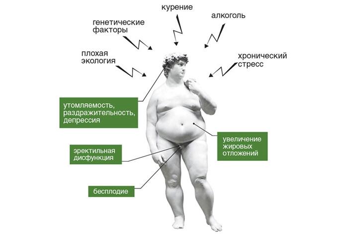 Пониженный тестостерон — незаметные признаки снижения гормонов