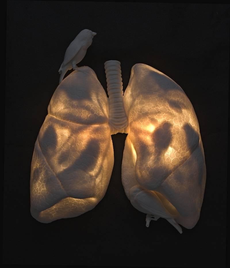 Роль психосоматики в развитии астмы у взрослых и детей, особенности лечения